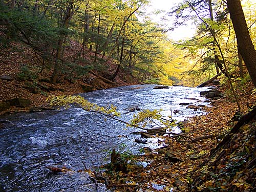A creek flows towards another set of waterfalls along the Niagara Escarpment during Fall